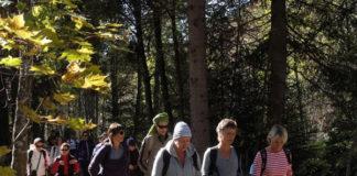 La montagne aide les malades du cancer à vaincre la maladie @L'association À chacun son Everest a organisé un premier séjour à Chamonix.