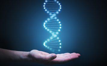ADN RoseUp Association Face aux cancers osons la vie