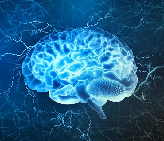 Le cerveau pourrait contrôler le développement des tumeurs en envoyant des neurones les infiltrer - roseup association