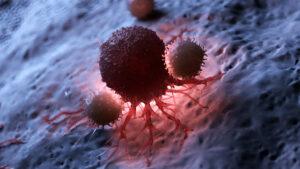 L'immunothérapie fait partie des nouveaux traitements d'avenir contre le cancer - roseup association