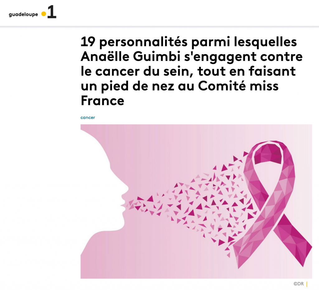 france-TV-info-presse-rose-up-association-campagne-octobre-rose-2020
