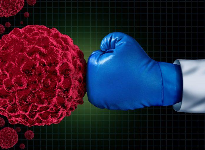 L'immunothérapie aide le système immunitaire à lutter par lui-même contre le cancer - roseup association